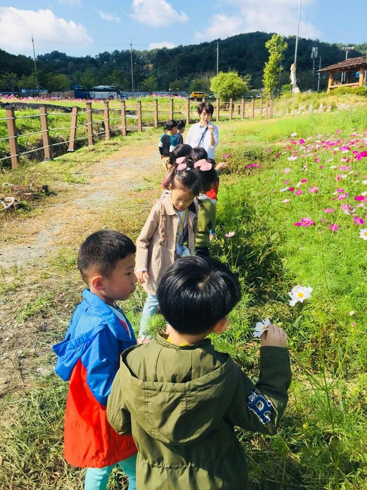장동 코스모스, 생태해설을 들으니 꽃이 더 예뻐요! 이미지